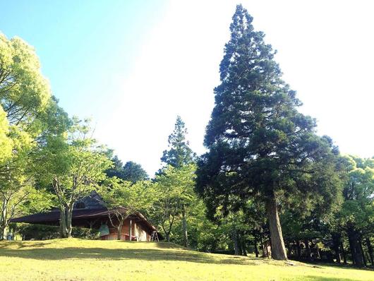 相生森林文化公園あいあいらんど...